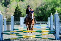 Horse shows, events and happenings